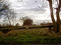 Old power line pole used as a gate-barrier leading to bridge over disused railway - geograph.org.uk - 654598.jpg