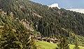 Panixersee (Lag da Pigniu) boven Andiast. (actm) 28.jpg