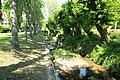 Parc de la Grande Maison à Bures-sur-Yvette le 9 mai 2017 - 40.jpg