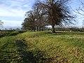Park Land - geograph.org.uk - 656452.jpg