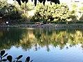Parque Municipal Fazendinha - Vitória - E.S.jpg