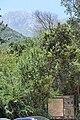Parque Nacional La Campana Ingreso por Granizo 03.jpg