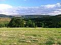 Pasture, Dibble Bridge Farm - geograph.org.uk - 30177.jpg
