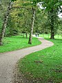 Path in Golden Acre Park - geograph.org.uk - 263130.jpg