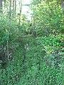 Pathway at Swan's Landing.jpg