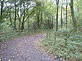 Pathway to Prior's Wood Hall - geograph.org.uk - 70339.jpg