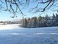 Paysage d'hiver Saint-Paul-en-Chablais.JPG