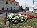 Peacock statue flower bed and Szent István School, 2018 Mezőkövesd.jpg