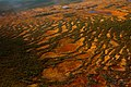 Peatbog (Yugansky Nature Reserve - aerial).jpg
