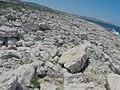 Pembroke, Malta - panoramio (38).jpg