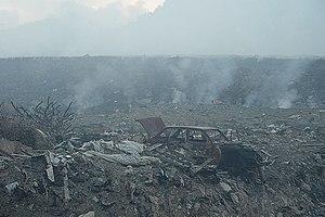 Grenada dove - Perseverance Landfill Fire Grenada, W.I. 2005