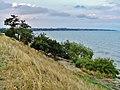 Petrushino, Rostovskaya oblast', Russia, 346842 - panoramio (1).jpg