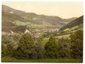 Peyerbach (i.e., Payerbach), from Reichenau, Lower Austria, Austro-Hungary-LCCN2002708374.tif