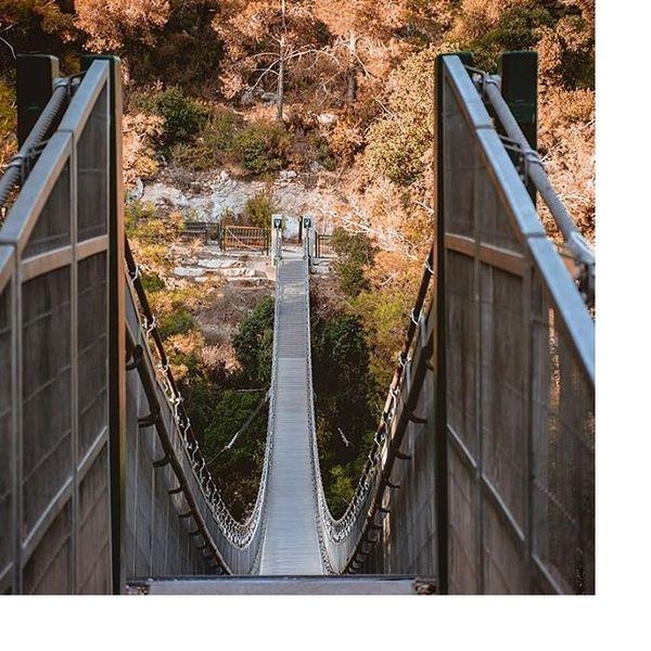 גשר ההרפתקאות נשר
