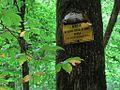 Pioneer Springs Trail MSFSP Memphis TN 2013-06-16 100.jpg