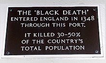 impact of the black death essays
