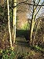 Plank bridge over ditch - geograph.org.uk - 1614898.jpg