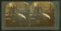 Plant of the blast furnace, Pittsburgh, Pa., U.S.A, from Robert N. Dennis collection of stereoscopic views 2.png
