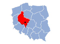 Pleszew miasto location map.PNG