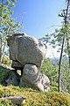 Pod Čertovým kamenem v Jizerských horách.jpg