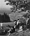 Pogled na Kostanjevico in Krško polje z Opatove gore 1930.jpg