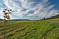 Pohled na vrchol Strážná, Myslejovice, okres Prostějov (02).jpg