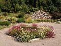 Poltava Botanical garden (14).jpg