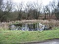 Pond at Gibbin's Brook - geograph.org.uk - 643621.jpg