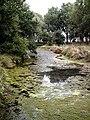 Pond beside Reddings Lane - geograph.org.uk - 221057.jpg