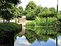 Pond reflections near to Little Missenden-geograph-3724474-by-Peter.jpg