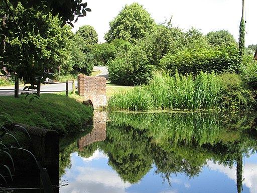 Pond reflections near to Little Missenden-geograph-3724474-by-Peter