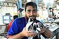 Posht-e Shahr Fish Market 2020-01-22 05.jpg