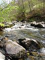 Povlen - zapadna Srbija - mesto Zarožije - Izvor reke Trešnjice 4.jpg