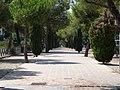 Pozuelo de Alarcón, Madrid, Spain - panoramio (38).jpg