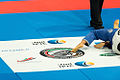 Premier Motors - World Professional Jiu-Jitsu Championship (13922988201).jpg