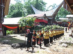 Procession at the funeral in Tana Toraja