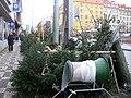 Prodej vánočních stromků na Flóře.jpg