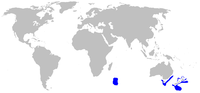 Range of the Plunket shark (in blue)