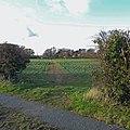Public Footpath to Thornton Curtis - geograph.org.uk - 1597557.jpg
