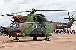 Puma (5095881321).jpg