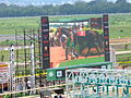 Pune Race course During Race day5 by Nitin-Jadhav.JPG