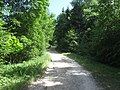 Punia, Lithuania - panoramio (7).jpg