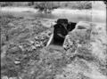 Queensland State Archives 1835 Irrigation channels Burdekin November 1955.png