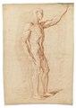 Rödkriteteckning på naken man och muskelgrupper, 1760-tal - Skoklosters slott - 99339.tif