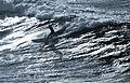 RAF Surfboarding MOD 45155231.jpg