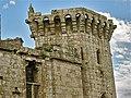 Raglan Castle, Monmouthshire 19.JPG