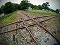 Railroad Crossing in the Delta.jpg