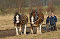 Rainford - Fir Tree Farm. Kings Moss.jpg