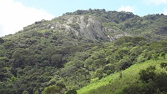 Biological reserve (Brazil) - Pedra Talhada Biological Reserve, Alagoas, June 2012