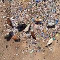 Recycling (5502451614).jpg